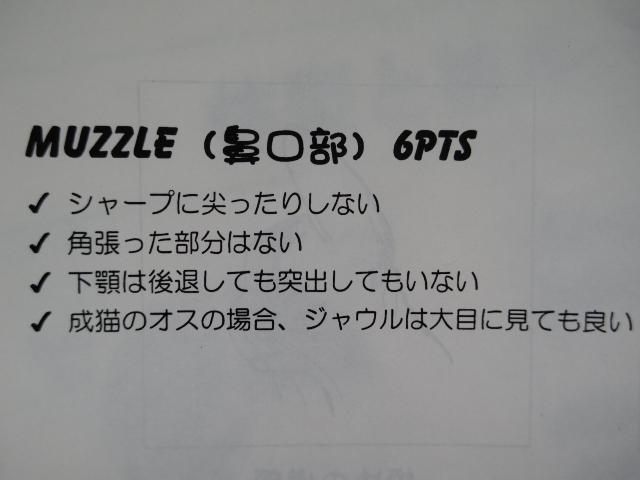 Imgp8682